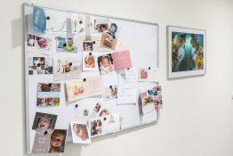 Mur des naissances gynécologue de confiance Montpellier